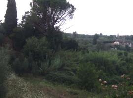 Vendita casale in pietra con terreno di mq 8.700,  Olevano Romano