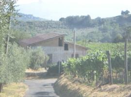 Vendita fabbricato agricolo/residenziale da rifinire con terreno,  Olevano Romano