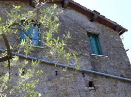 Vendita casale su due livelli in campagna con terreno a Olevano Romano