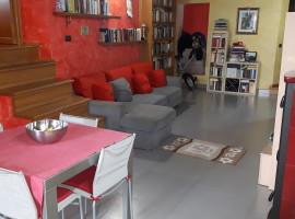 Vendita appartamento ristrutturato con due camere a Olevano Romano